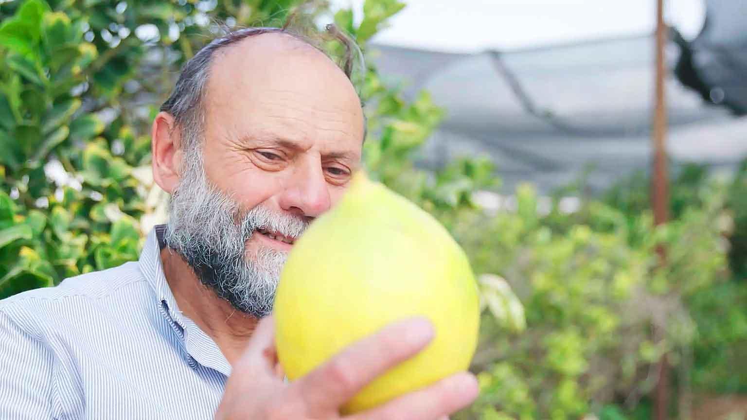 Karg ist der Negev, fruchtbar und grün - Teil 2